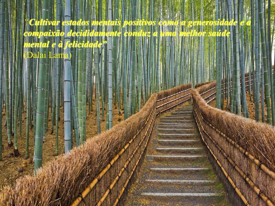 Cultivar estados mentais positivos como a generosidade e a compaixão decididamente conduz a uma melhor saúde mental e à felicidade (Dalai Lama)