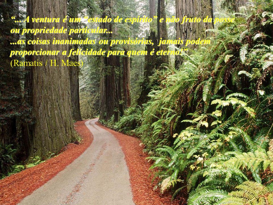 ...A ventura é um estado de espírito e não fruto da posse ou propriedade particular...