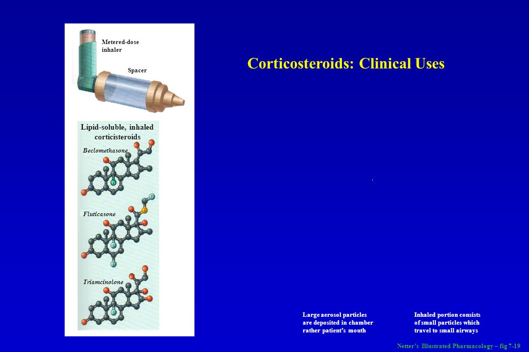 Lipid-soluble, inhaled corticisteroids