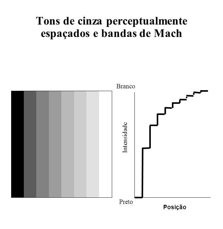 Tons de cinza perceptualmente espaçados e bandas de Mach