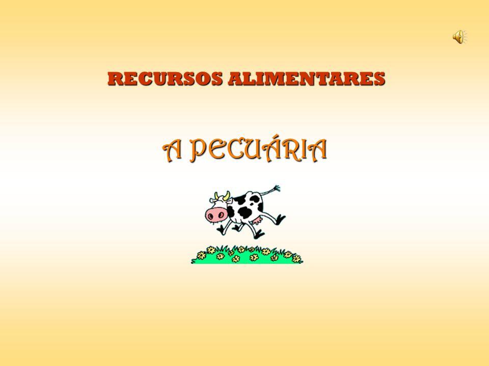RECURSOS ALIMENTARES A PECUÁRIA