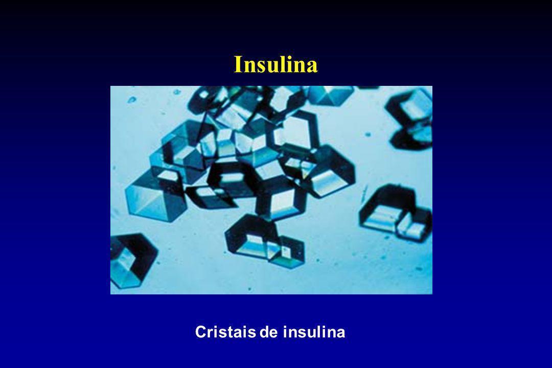 Insulina Cristais de insulina
