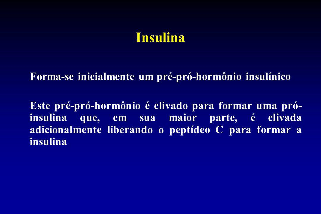 Insulina Forma-se inicialmente um pré-pró-hormônio insulínico