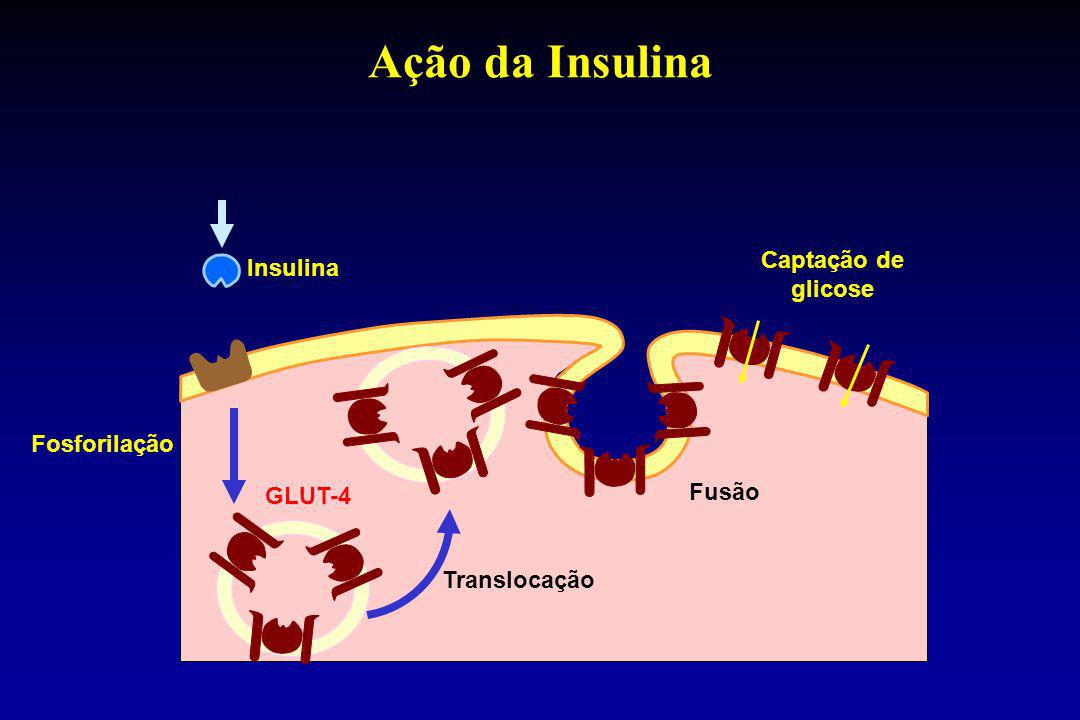 Ação da Insulina Captação de glicose Insulina Fosforilação Fusão