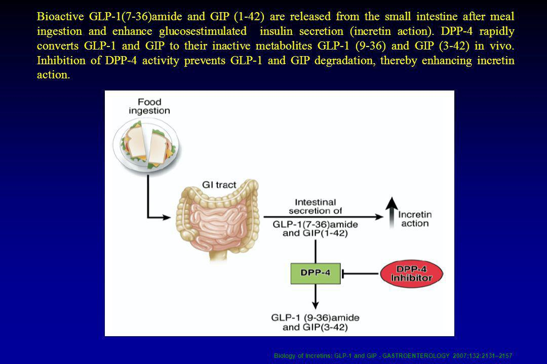Bioactive GLP-1(7-36)amide and GIP (1-42) are released from the small intestine after meal ingestion and enhance glucosestimulated insulin secretion (incretin action). DPP-4 rapidly converts GLP-1 and GIP to their inactive metabolites GLP-1 (9-36) and GIP (3-42) in vivo. Inhibition of DPP-4 activity prevents GLP-1 and GIP degradation, thereby enhancing incretin action.