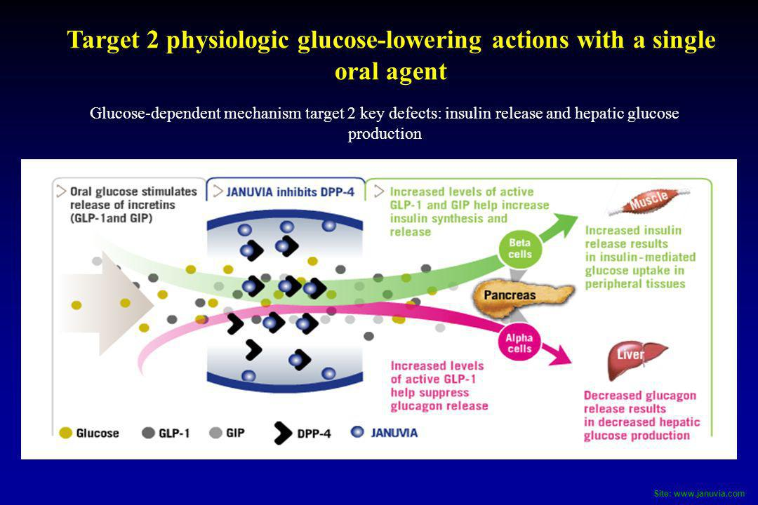 Target 2 physiologic glucose-lowering actions with a single oral agent