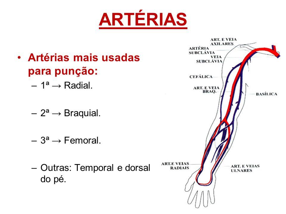 Lujoso Arteria Cefálica Festooning - Imágenes de Anatomía Humana ...