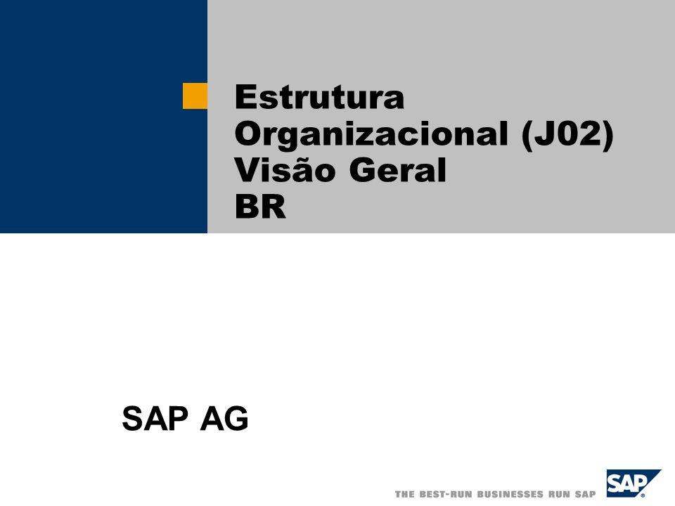 Estrutura Organizacional (J02) Visão Geral BR