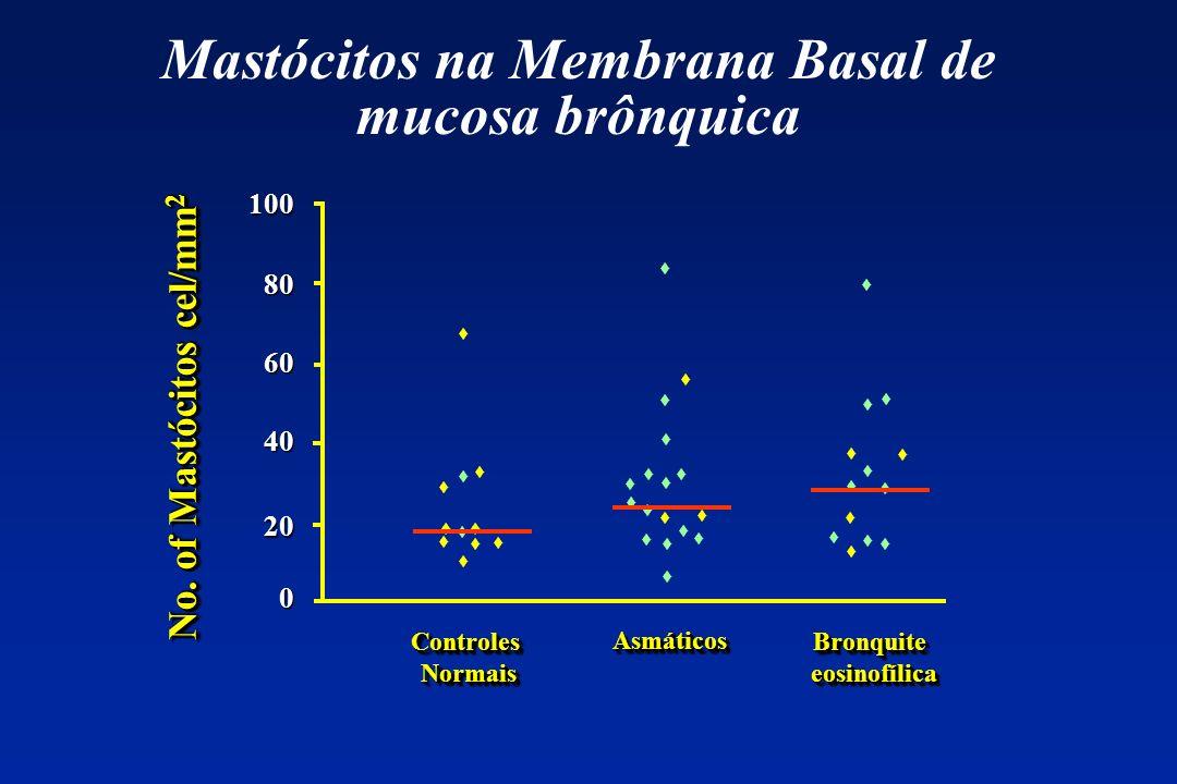 Mastócitos na Membrana Basal de mucosa brônquica