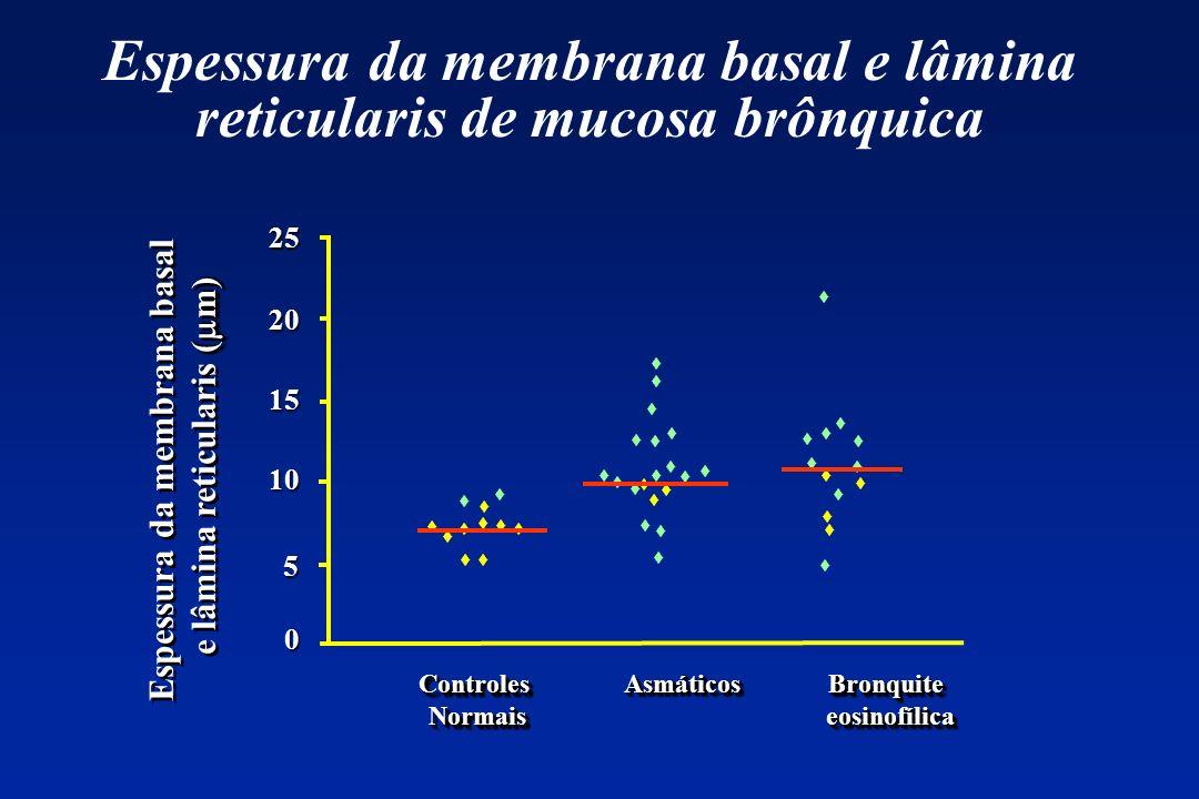 Espessura da membrana basal e lâmina reticularis de mucosa brônquica