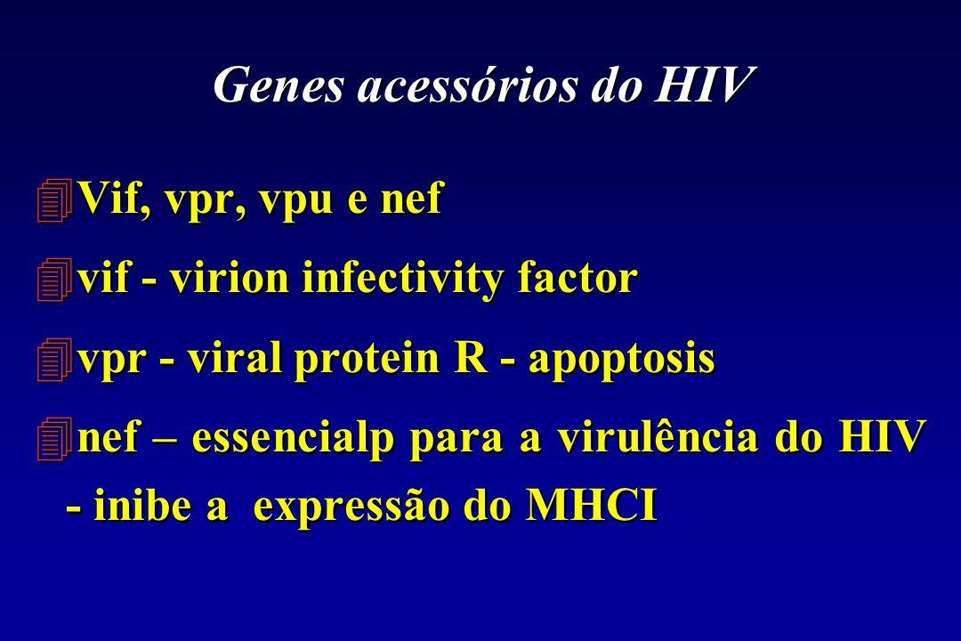 Genes acessórios do HIV