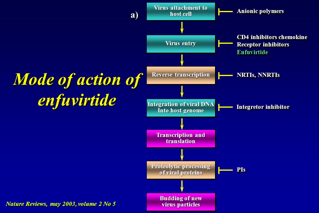 Mode of action of enfuvirtide