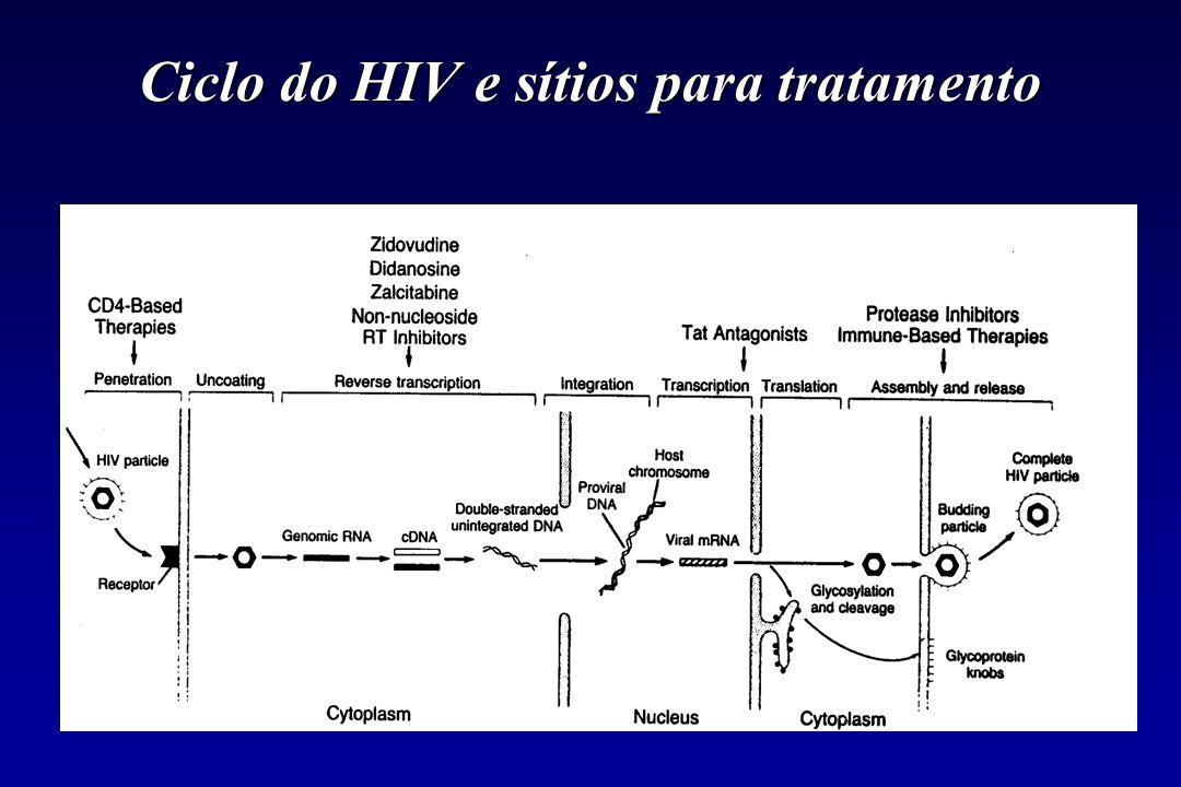 Ciclo do HIV e sítios para tratamento