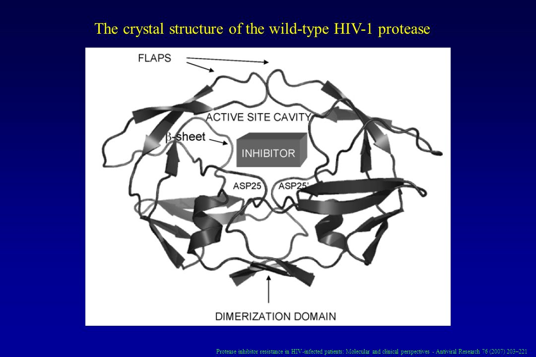 The crystal structure of the wild-type HIV-1 protease