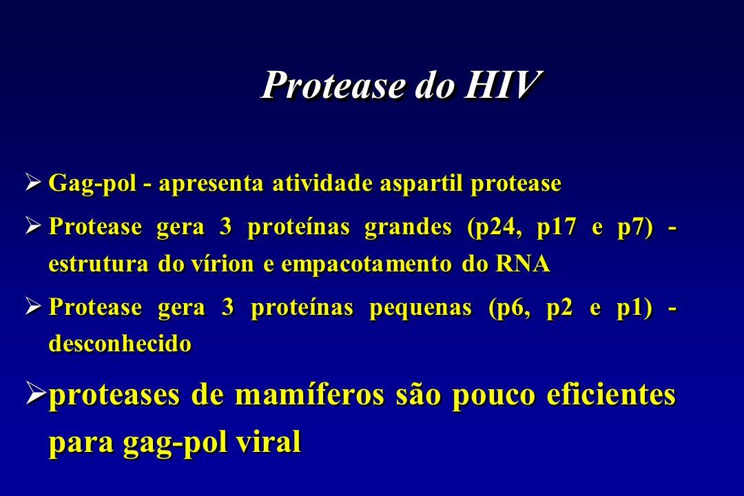 Protease do HIVGag-pol - apresenta atividade aspartil protease.