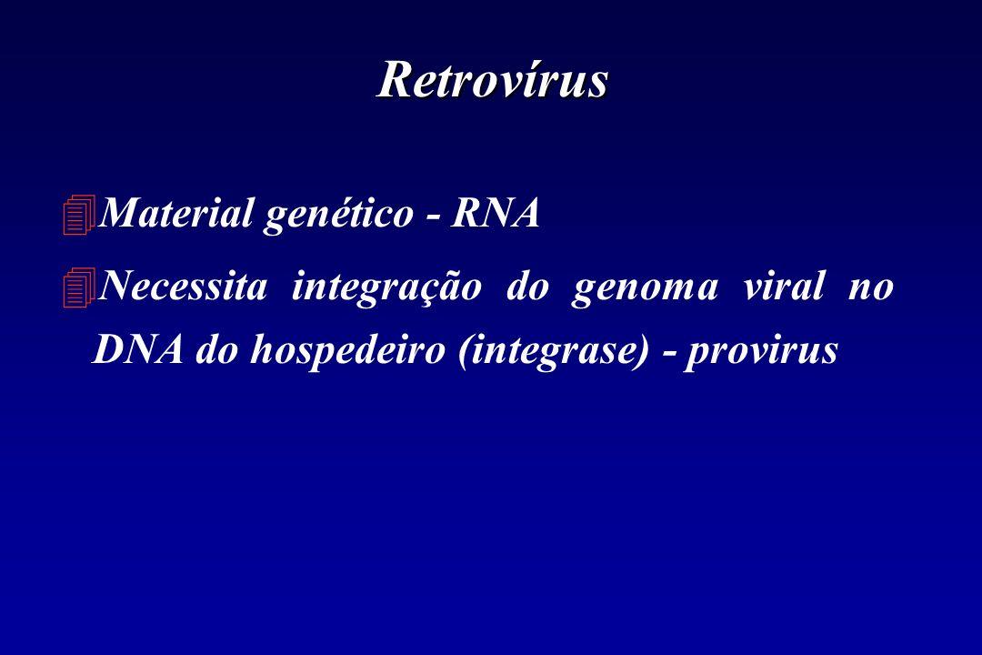 Retrovírus Material genético - RNA