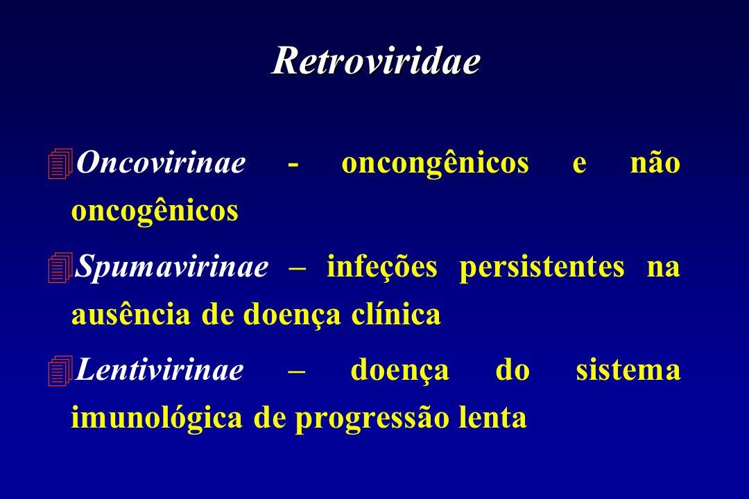 Retroviridae Oncovirinae - oncongênicos e não oncogênicos