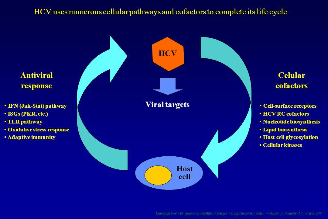 HCV Antiviral response Celular cofactors Viral targets Host cell