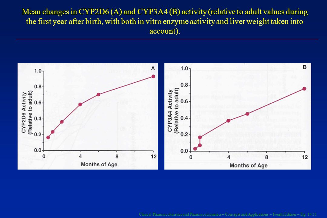 Mean changes in CYP2D6 (A) and CYP3A4 (B) activity (relative to adult values during the first year after birth, with both in vitro enzyme activity and liver weight taken into account).