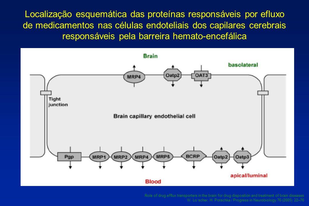 Localização esquemática das proteínas responsáveis por efluxo de medicamentos nas células endoteliais dos capilares cerebrais responsáveis pela barreira hemato-encefálica