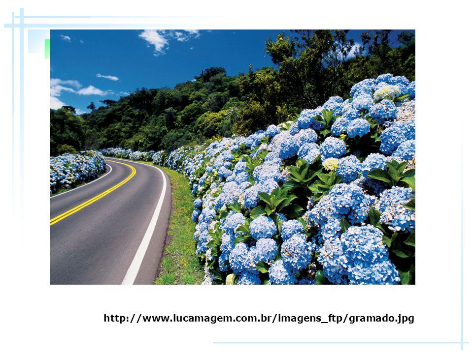 http://www.lucamagem.com.br/imagens_ftp/gramado.jpg