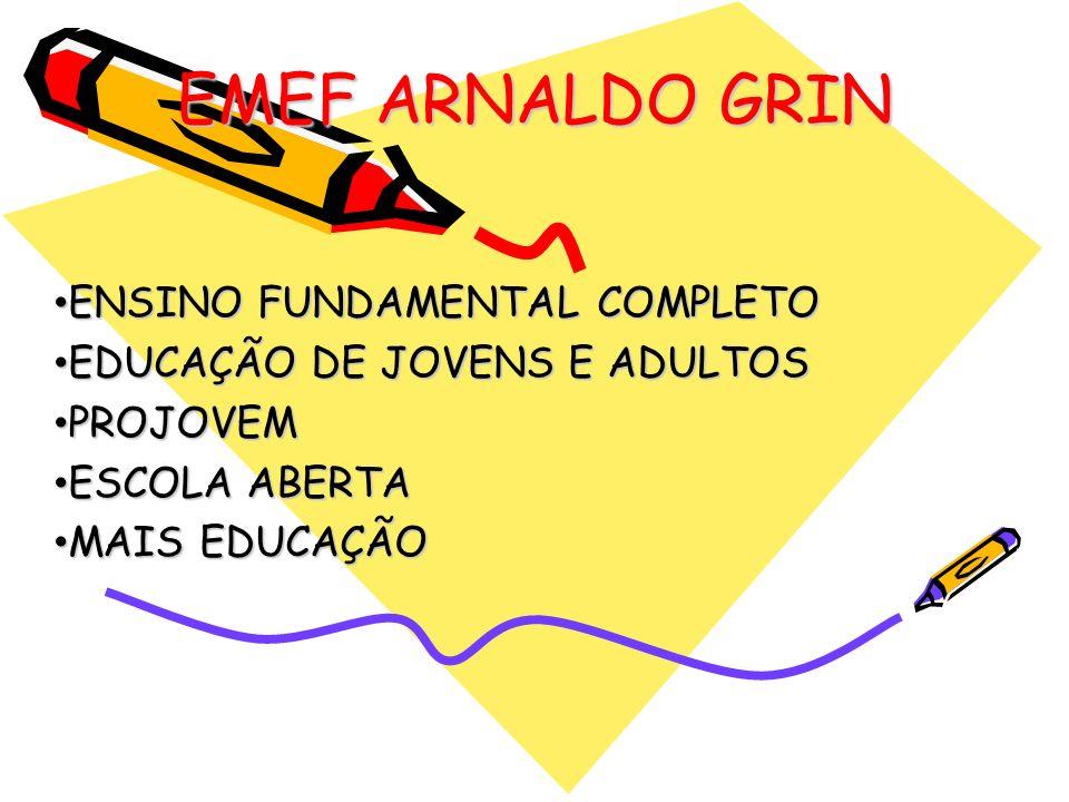 EMEF ARNALDO GRIN ENSINO FUNDAMENTAL COMPLETO