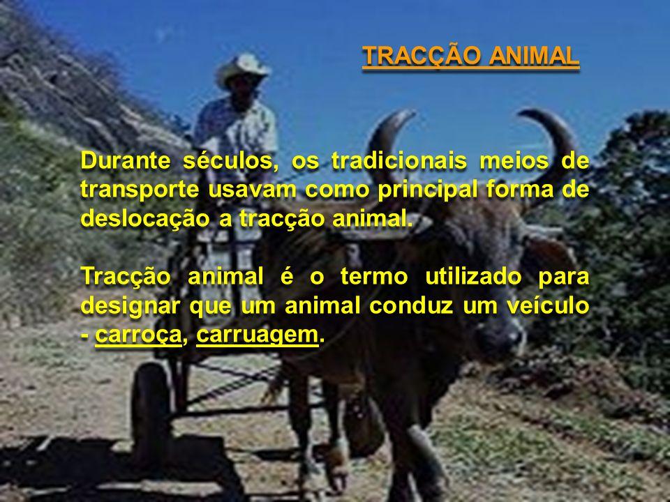 TRACÇÃO ANIMAL Durante séculos, os tradicionais meios de transporte usavam como principal forma de deslocação a tracção animal.