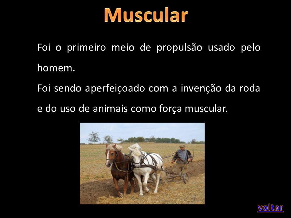 Muscular Foi o primeiro meio de propulsão usado pelo homem.