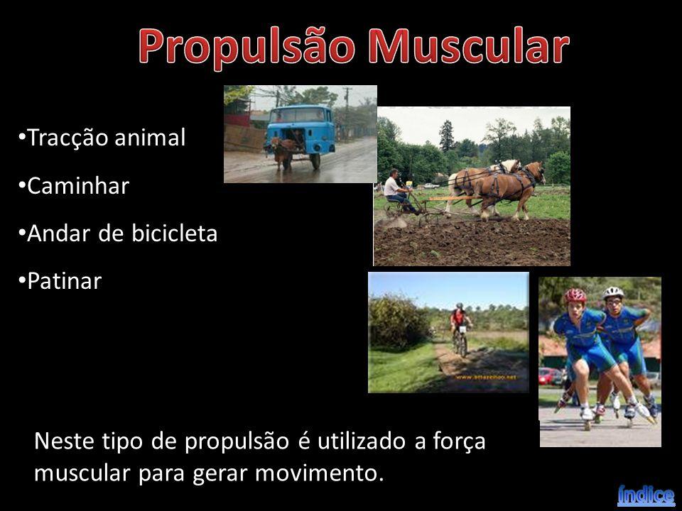 Propulsão Muscular Tracção animal Caminhar Andar de bicicleta Patinar