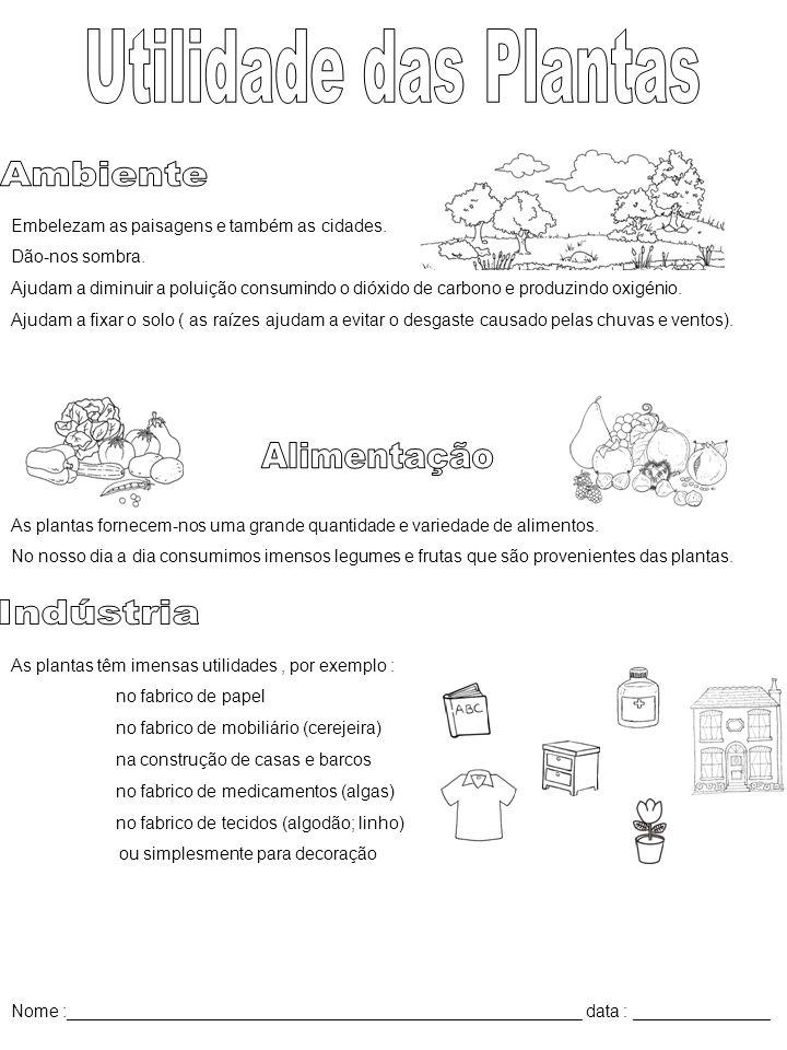Utilidade das Plantas Ambiente Alimentação Indústria