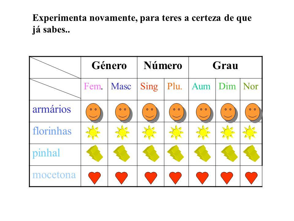 Género Número Grau armários florinhas pinhal mocetona