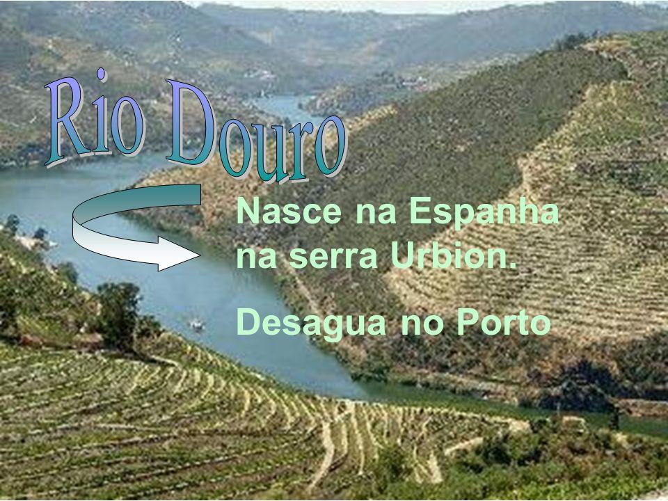 Nasce na Espanha na serra Urbion. Desagua no Porto