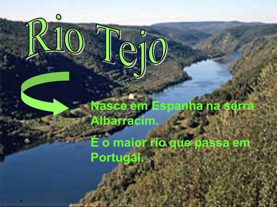 Rio Tejo Nasce em Espanha na serra Albarracim.