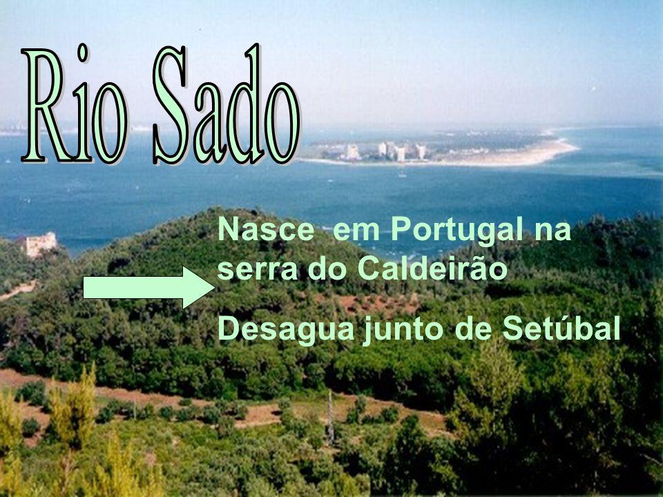 Rio Sado Nasce em Portugal na serra do Caldeirão Desagua junto de Setúbal