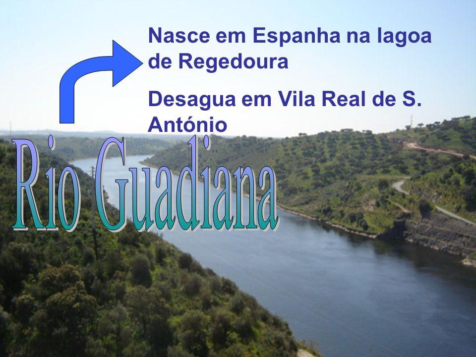 Rio Guadiana Nasce em Espanha na lagoa de Regedoura