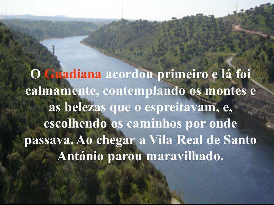 O Guadiana acordou primeiro e lá foi calmamente, contemplando os montes e as belezas que o espreitavam, e,