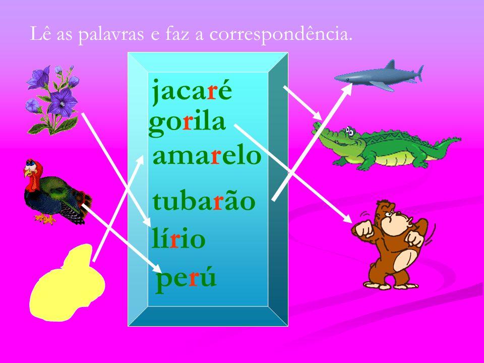 jacaré gorila amarelo tubarão lírio perú