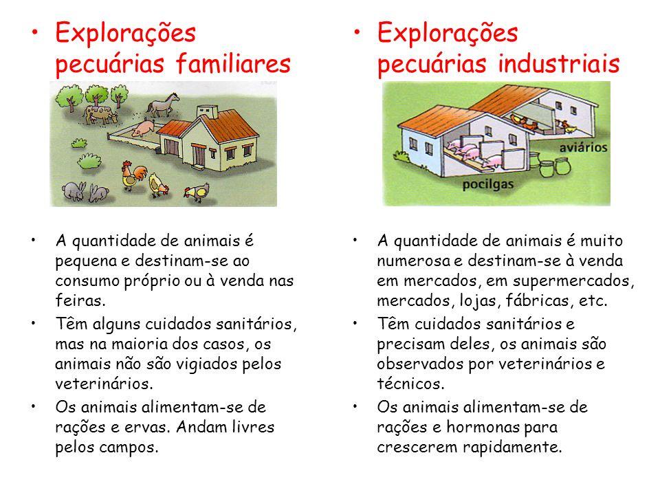 Explorações pecuárias familiares Explorações pecuárias industriais