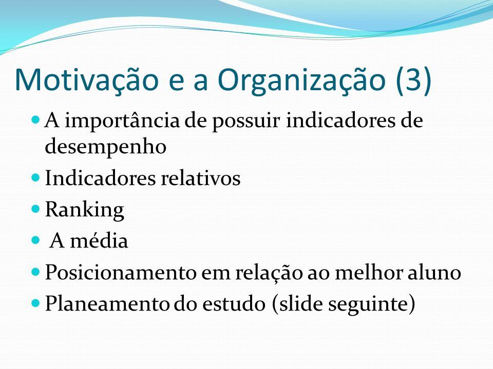 Motivação e a Organização (3)