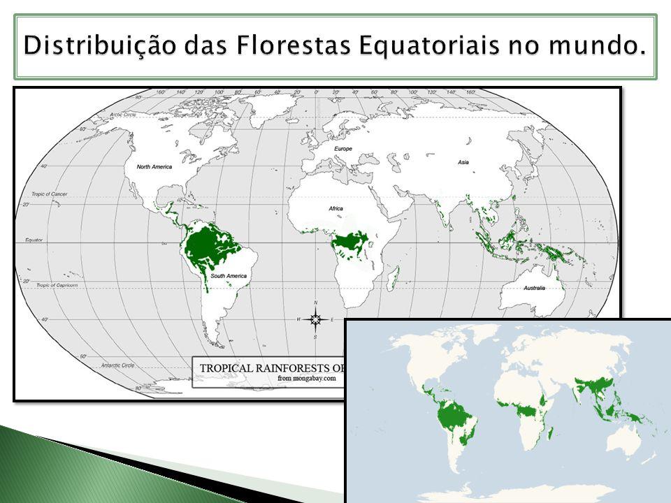 Distribuição das Florestas Equatoriais no mundo.