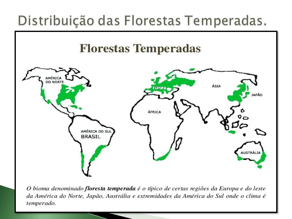 Distribuição das Florestas Temperadas.