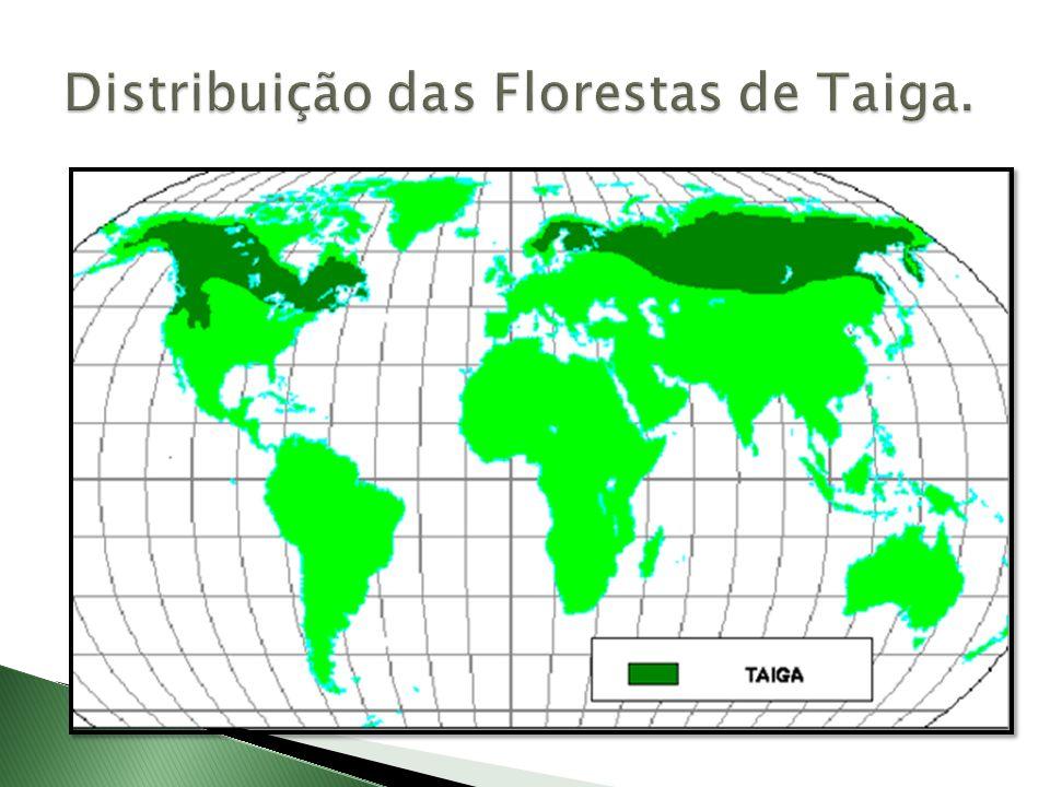 Distribuição das Florestas de Taiga.