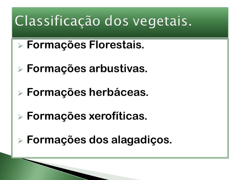 Classificação dos vegetais.