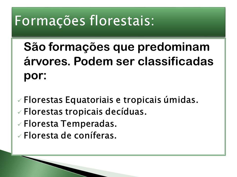 Formações florestais: