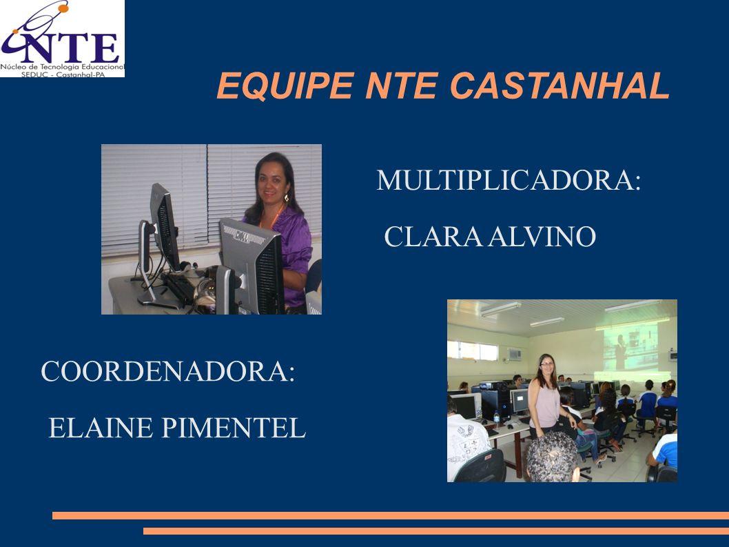 EQUIPE NTE CASTANHAL MULTIPLICADORA: CLARA ALVINO COORDENADORA: