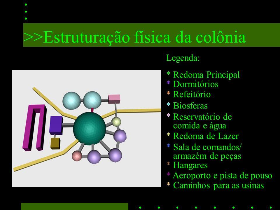 >>Estruturação física da colônia