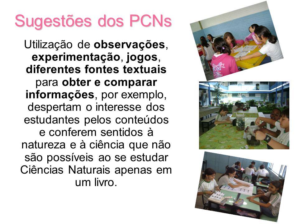 Sugestões dos PCNs