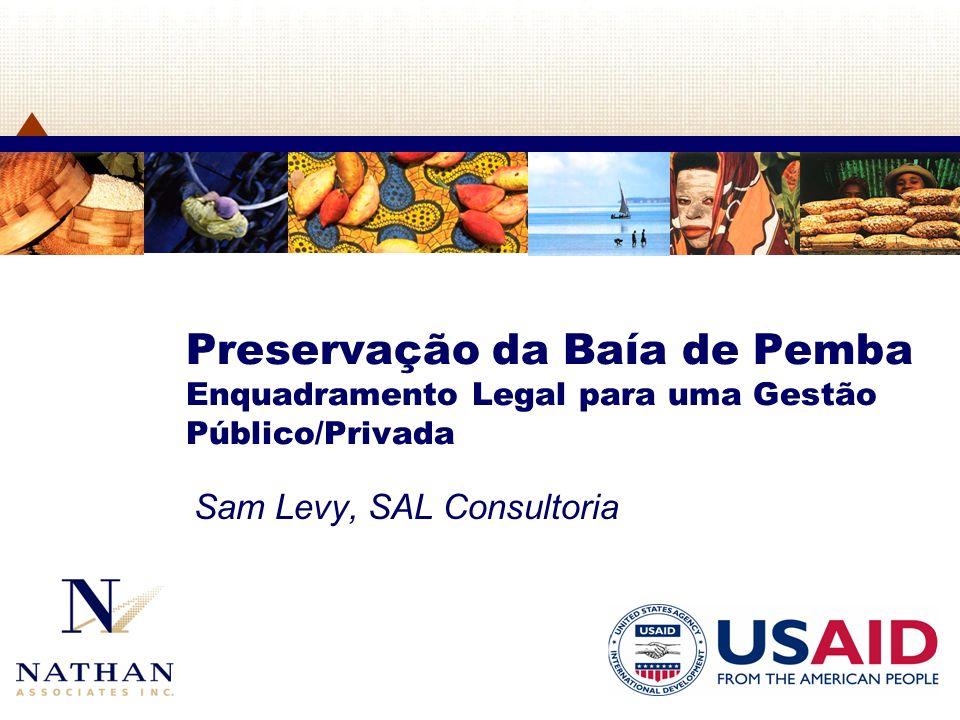 Sam Levy, SAL Consultoria