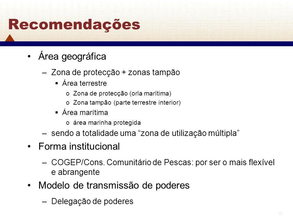 Recomendações Área geográfica Forma institucional