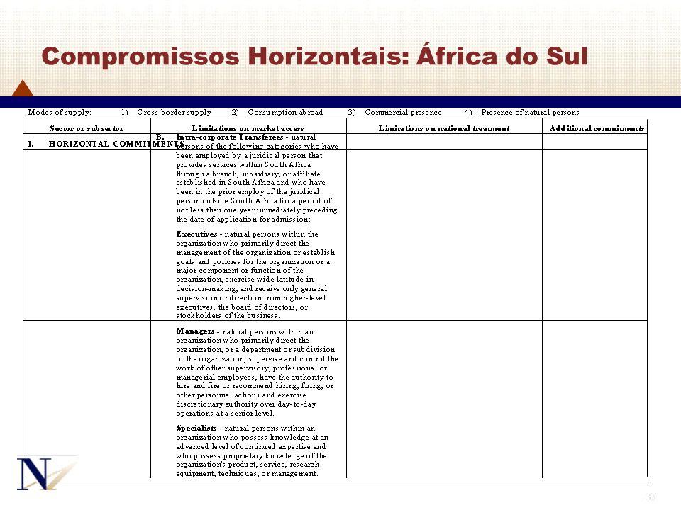 Compromissos Horizontais: África do Sul